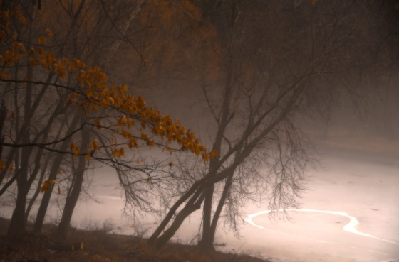 fog1_HDR2web