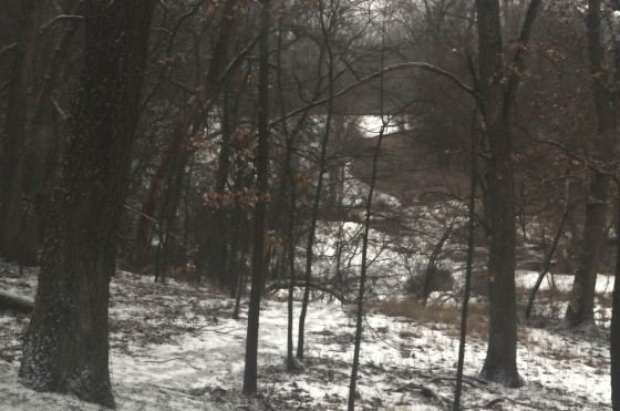 The rough white is snow in the woods, and the smooth white is the snow on the ice of my uncle's pond.
