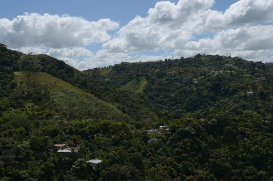 A gorgeous view of the hills around Guaynabo, too.  It makes you feel like you're way out in the center of the island.