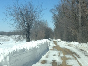The road into the farm after I waited all day to get plowed out!  This was March 22nd!