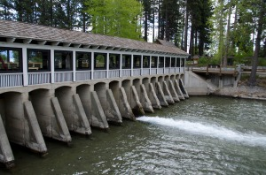 This is the Dam that controls the water leaving the lake.  There are BIG fish in the shallows waiting for dinner.