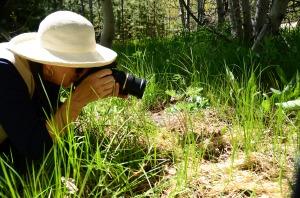 Annie shooting Wildflowers