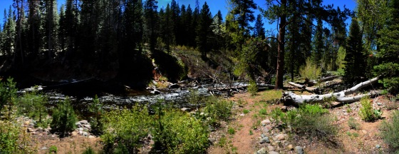 Panorama of the Truckee River