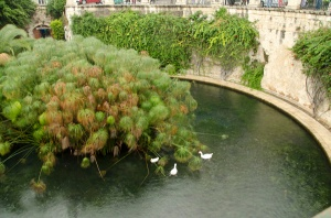 The fountain of Zarathustra