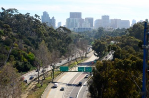 View of downtown San Diego as we were walking across the Cabrillo Bridge in Balboa Park (It is undergoing renovations to make it more earthquake proof).