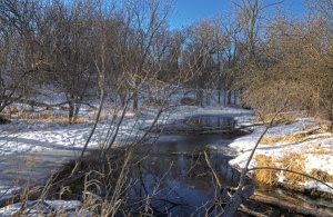 The stream in March