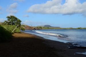 Cormorant Point Beach