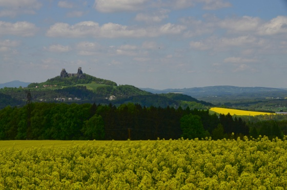 Castle Trosky seen from over the canola fields
