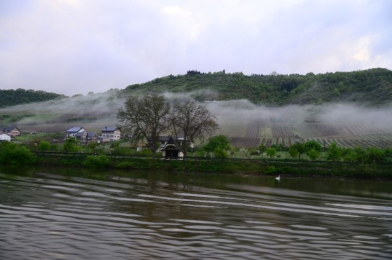 Foggy morning on the Moselle