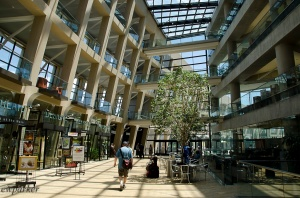 This is the Atrium of the Library.
