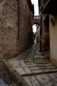 Did I say we had to walk up steep hills within the town. Here's an example! Spello