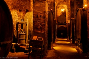 The Ricci wine cellars - They are called Ricci because they are located in the Ricci palace.