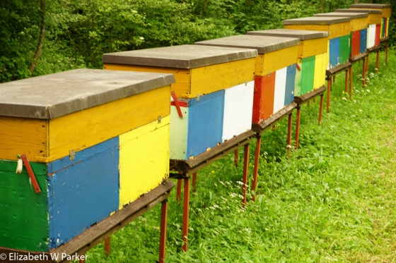 Typical painted beehives (trying to bring you back to a cheerful note!