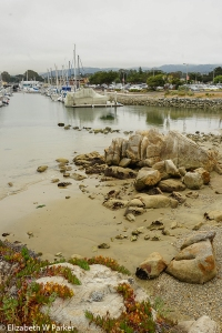 Harbor view near Pacific Grove