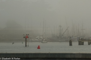 Harbor in the fog at Moss Landing