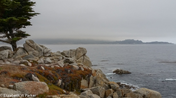 A last look: Ocean view from 17-Mile Drive