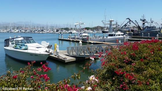 Harbor view in Ventura