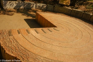 Exhibit of the rings of a Giant Sequoia - the first brass plaque denotes 70 CE