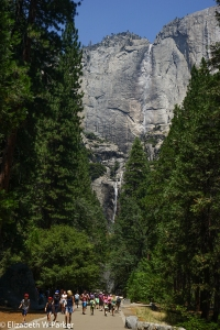 These are the Yosemite Falls - tiny rivulets at this time of year.