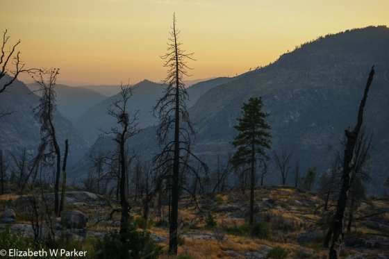 Sunset in the Stanislaus National Forest