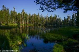 Siesta Lake - on the Tioga Road, Yosemite National Park