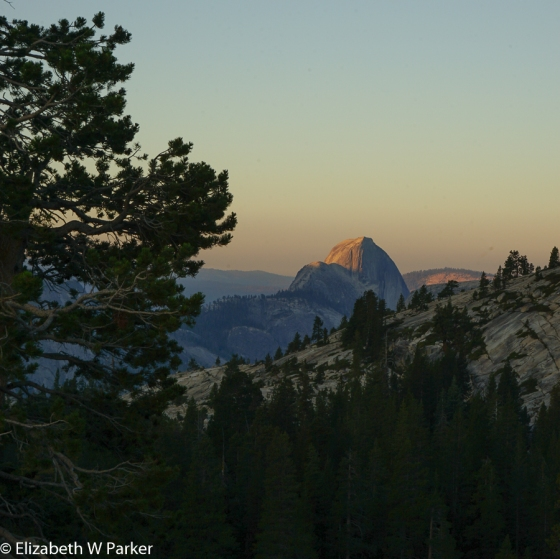 Half Dome from Olmsted Point about 6:00 am.