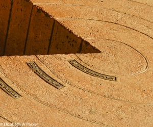 Detail from the rings of a Giant Sequoia - 70 AD Roman Colossem, Italy