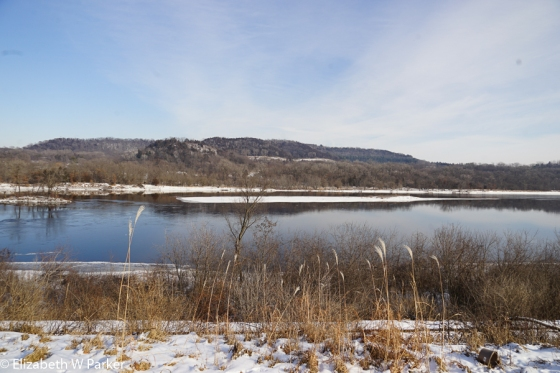 The Wisconsin River at Sauk City / Prairie du Sac, Wisconsin. Note the bluffs on the east side of the river. This is where the eagles overnight.