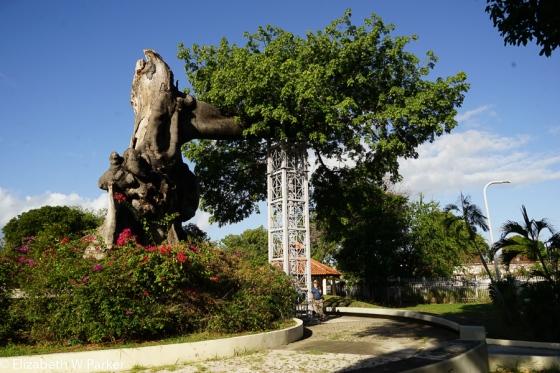 La Ceiba de Ponce 2017