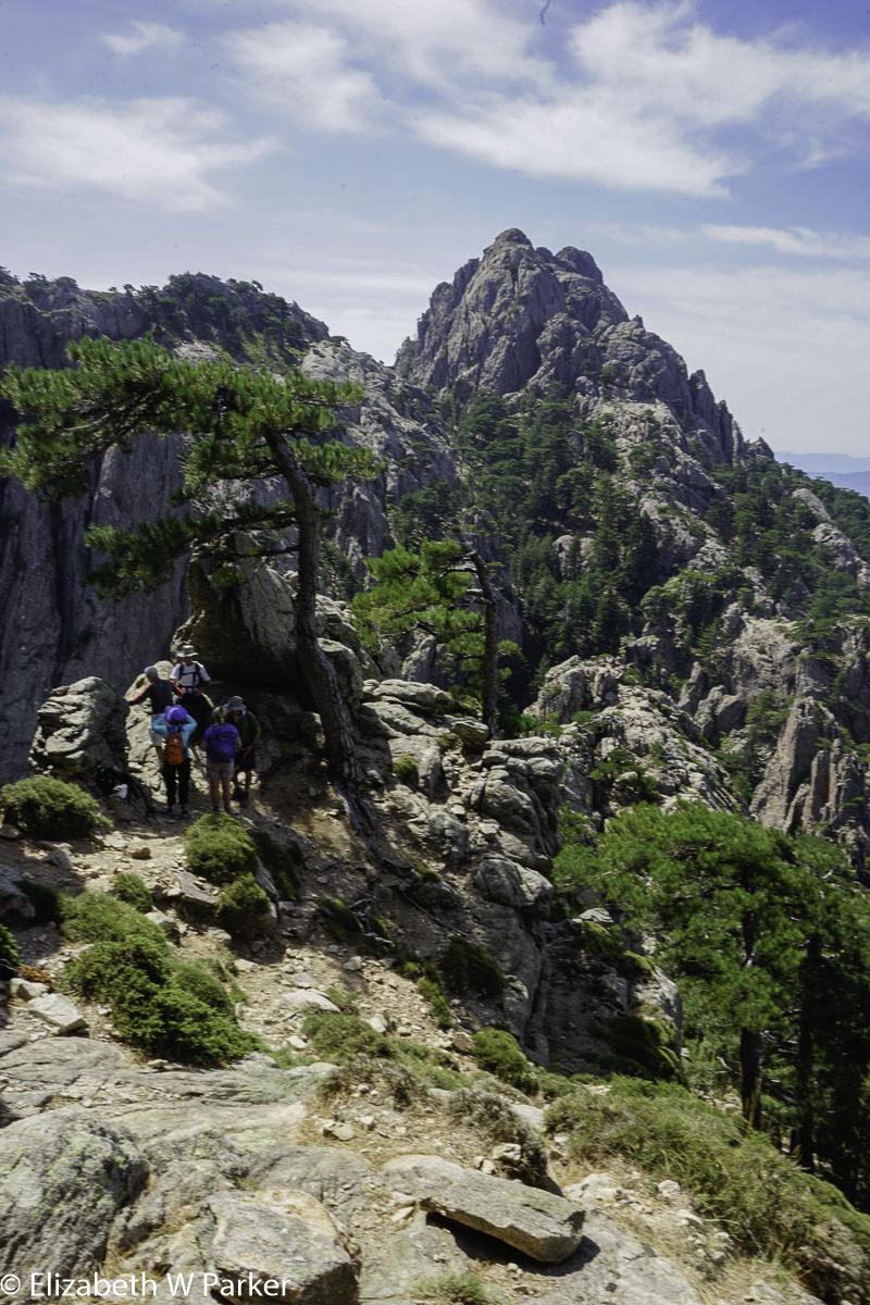 Col De Bavella Hike Zonza Corsica