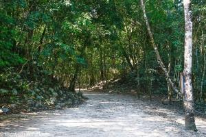 Cobá ruins, Quintana Roo, Mexico
